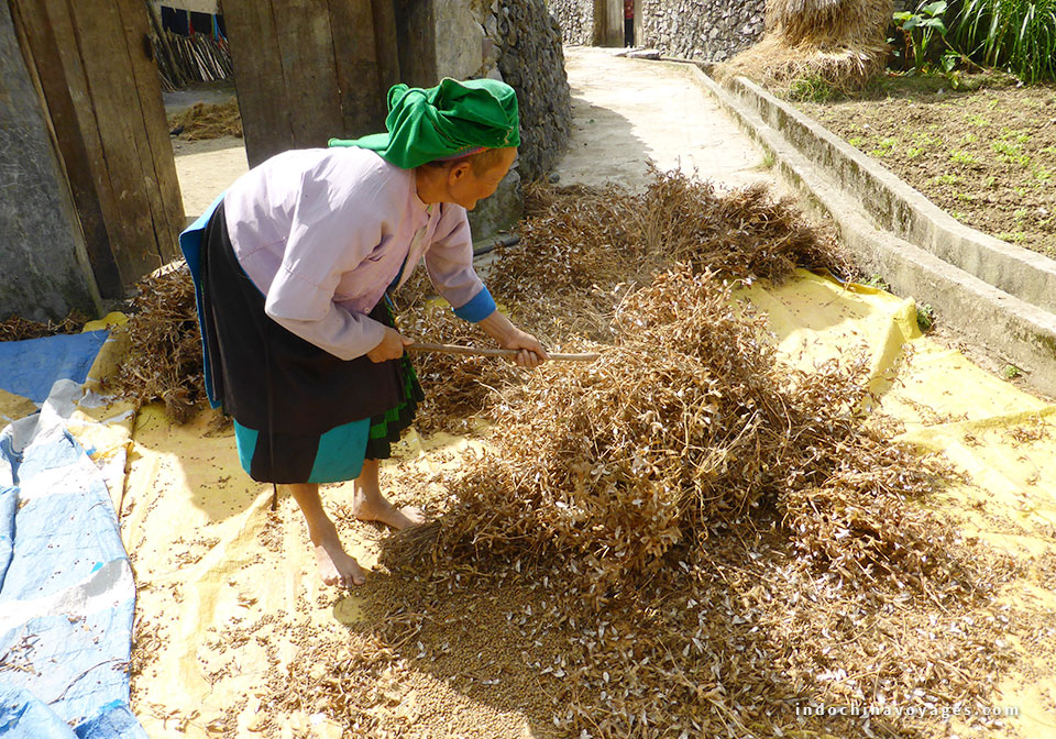 Local people in Ha Giang