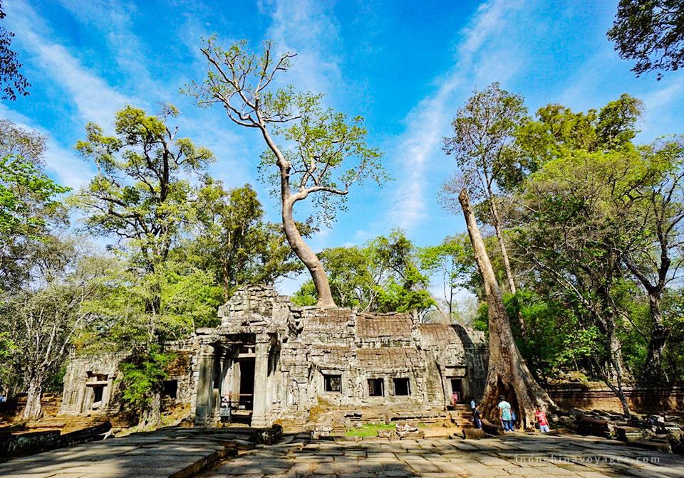 Siem Reap Arrival