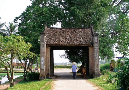 Ba Vi National Park – Duong Lam Ancient Village Day Tour