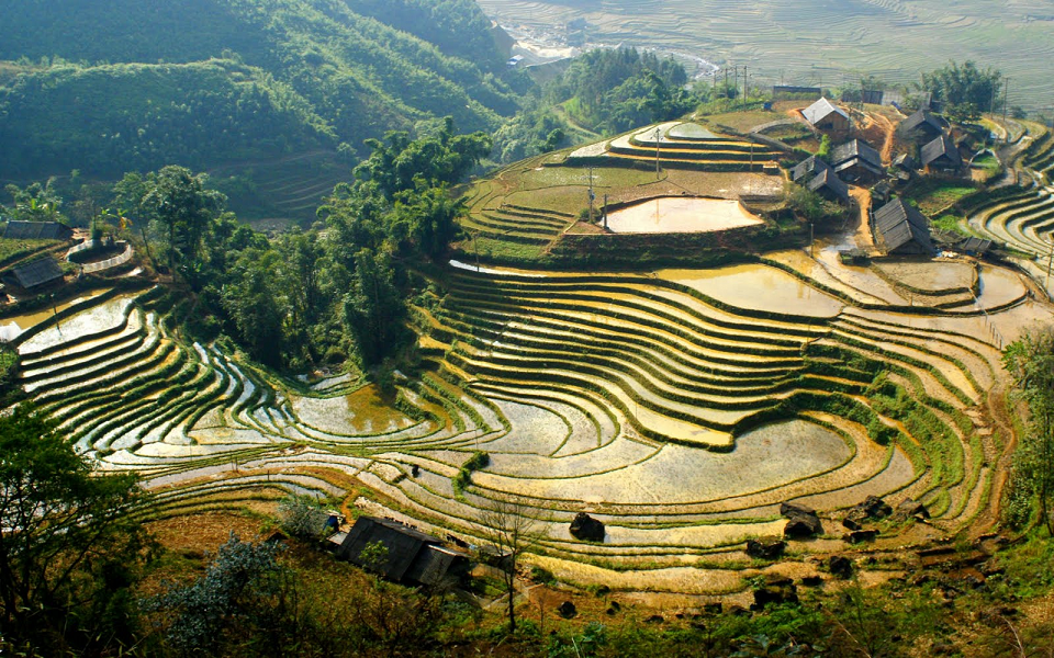 Travel to Sapa is one of the most favourite Vietnam tour packages for foreigners