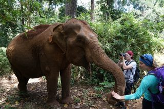 Top 5 things to do in Siem Reap day tours