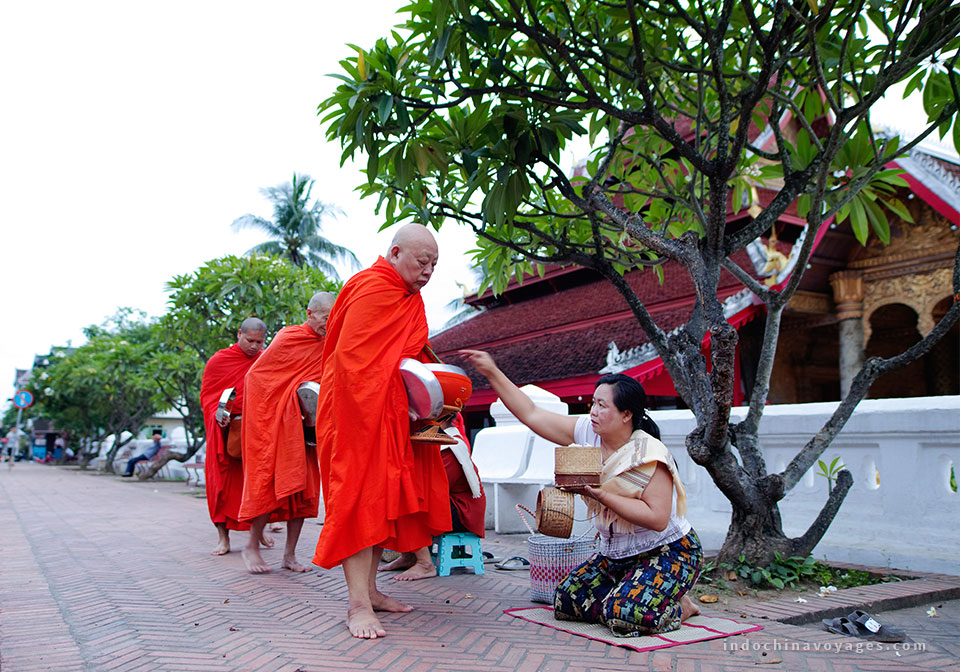 Alms giving - Luang Prabang