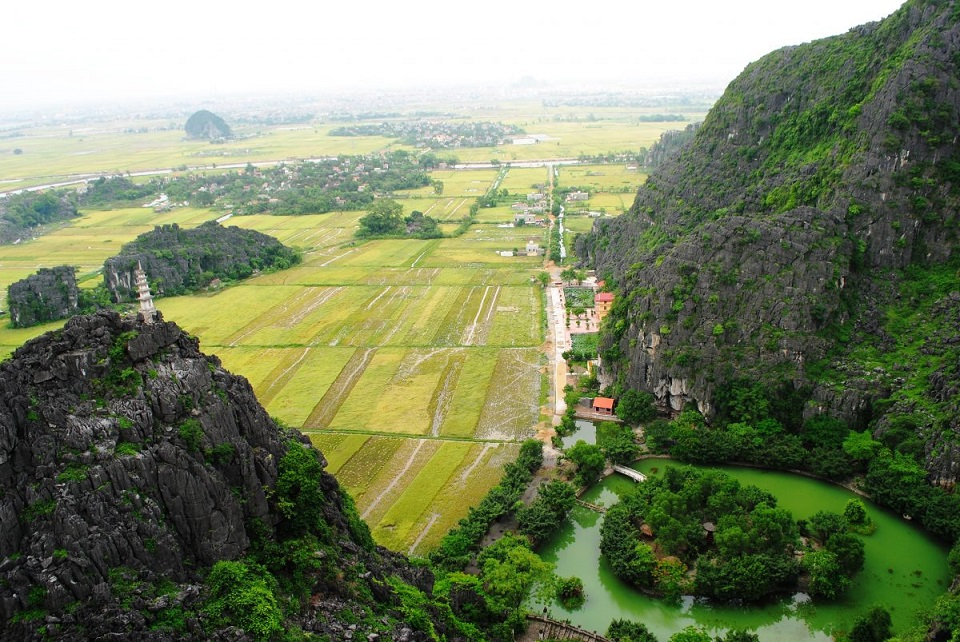 Rice Field from Peak of Mua Cave