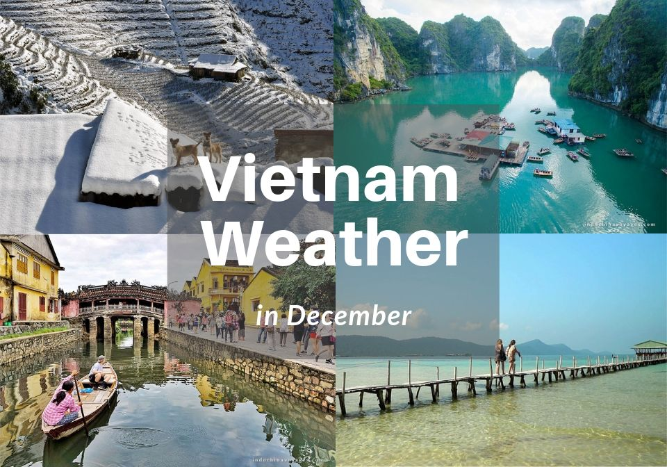 Vietnam weather in December