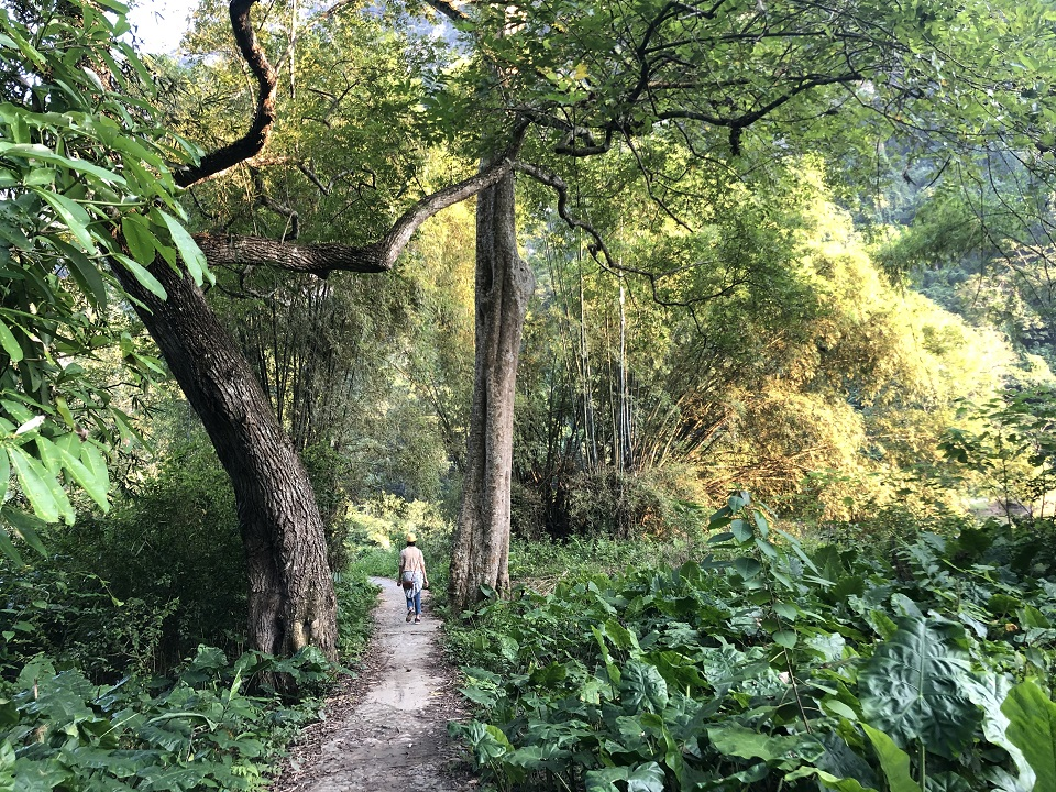 Ba Be national park trekking journey