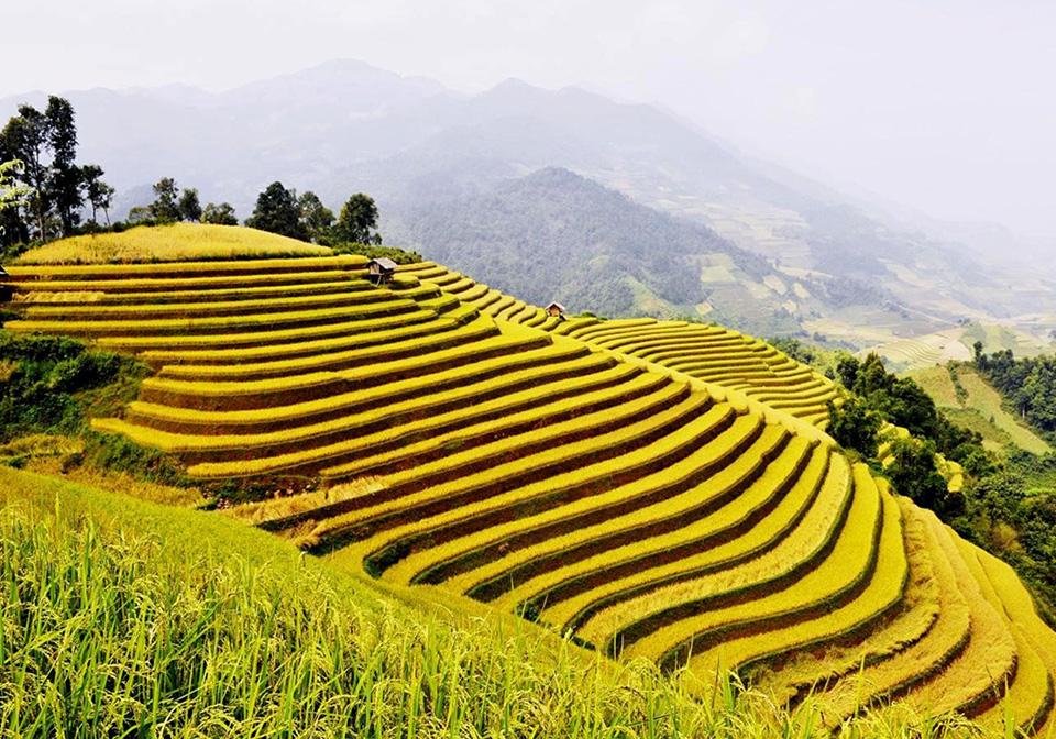Ha Giang in September